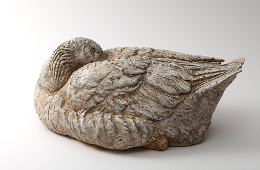 Sleeping-Goose