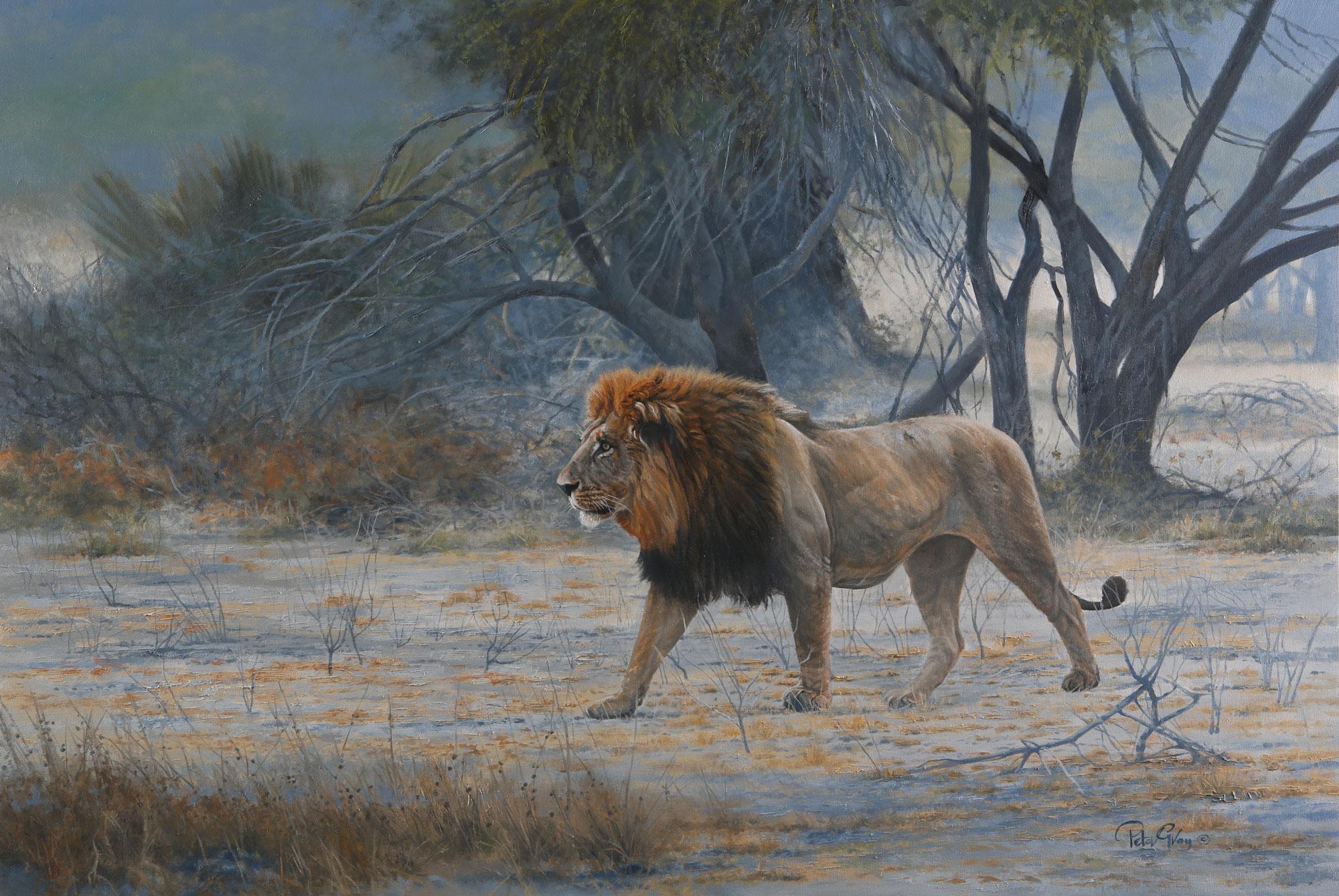 Desert-Lion