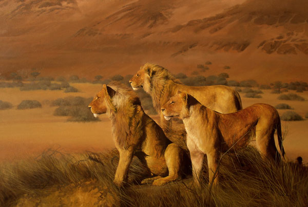Namibian Lions