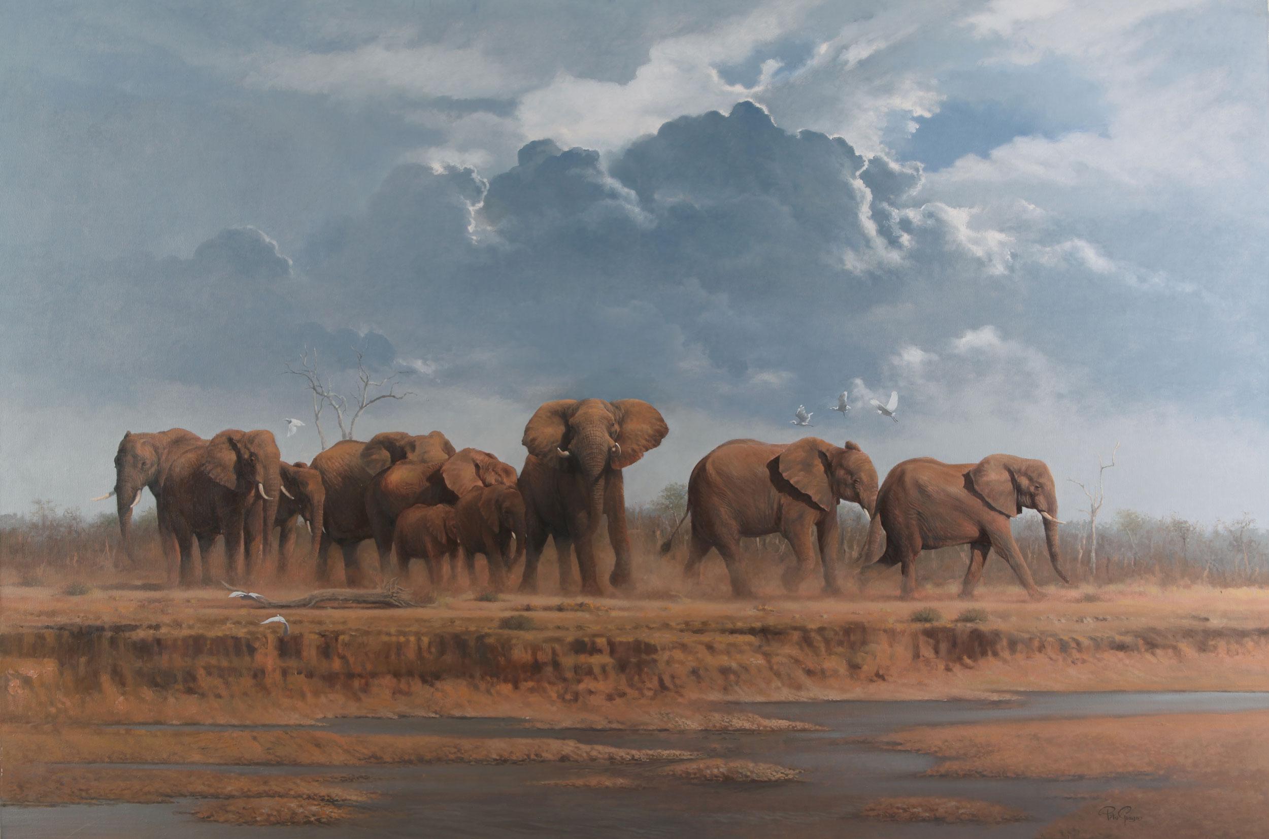 Matriarchal Herd | Peter Gray