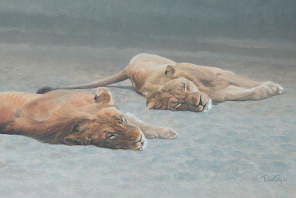 Reclining Lions